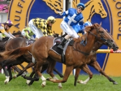 Star Witness winning the Gr.1 Blue Diamond