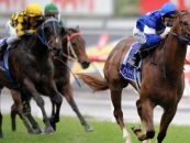 Star Witness winning the Gr.1 Coolmore Stud Stakes