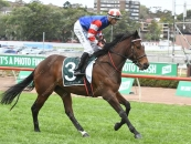 Photo Taken At Randwick First Start Ever Before His 147k Listed Race