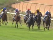 Leading to the last furlong in RED WHITE and BLU silks