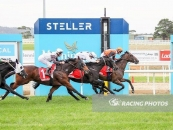 Eroe Places A Mighty 3rd At Mornington 4 Starts Ago Number 1