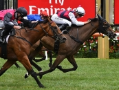 Capannello Wins At Flemington