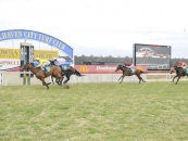 5th At Nowra 5 Starts Ago Pink and Gold Diagonals