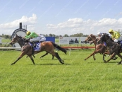 Leads All The Way At Muswellbrook