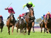 Sizzling 3rd At Doomben 30k Race Over 1350m