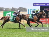 Classy 2nd At Werribee Number 6