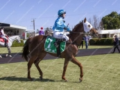 Wins easily at strong Gawler over 1200m