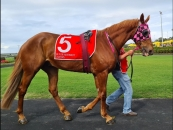 Photo Taken 3rd of January at his last start at the Sunshine Coast