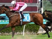 Places A Close Up 2nd At The Gold Coast Pink & Maroon Stripes