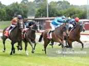 Ostara Places 2nd Beaten A Lizards Lip 2 Starts Ago At Stoney Creek Over 1100m Aqua Blue Colours