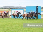 Ostara Places 4th In Another Close Up Finish At Mornington 4 Starts Ago Over 1200m Outside Aqua Blue Colours