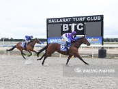 Coronel Places 2nd At Ballarat Synthetic Last Start Over 1400m